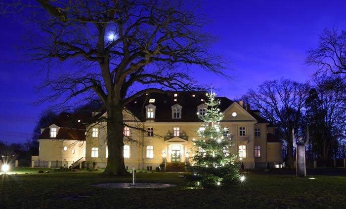 Weihnachtsbaum-vor-Gutshaus-2019-web
